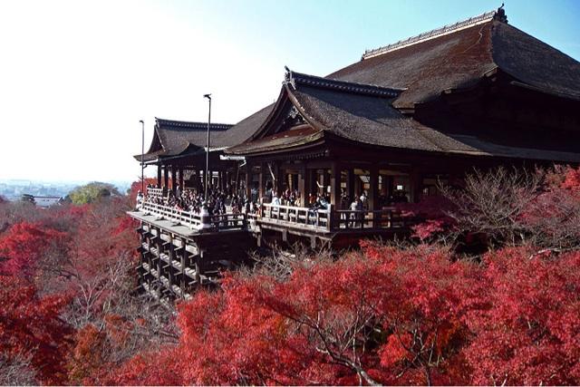 Rasarituri de suflet…../ Japonia
